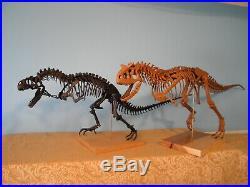 Allosaurs and Carnotaurus skeleton model kit combo! Free ship this week